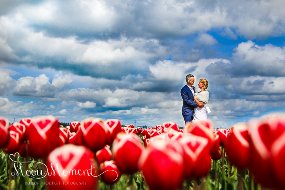Bruiloft Sasha en Michael Hoorn Rode Steen, Ridderikhof