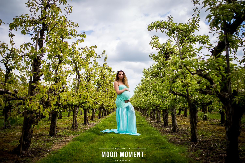 Zwangerschaps reportage in de bloesems