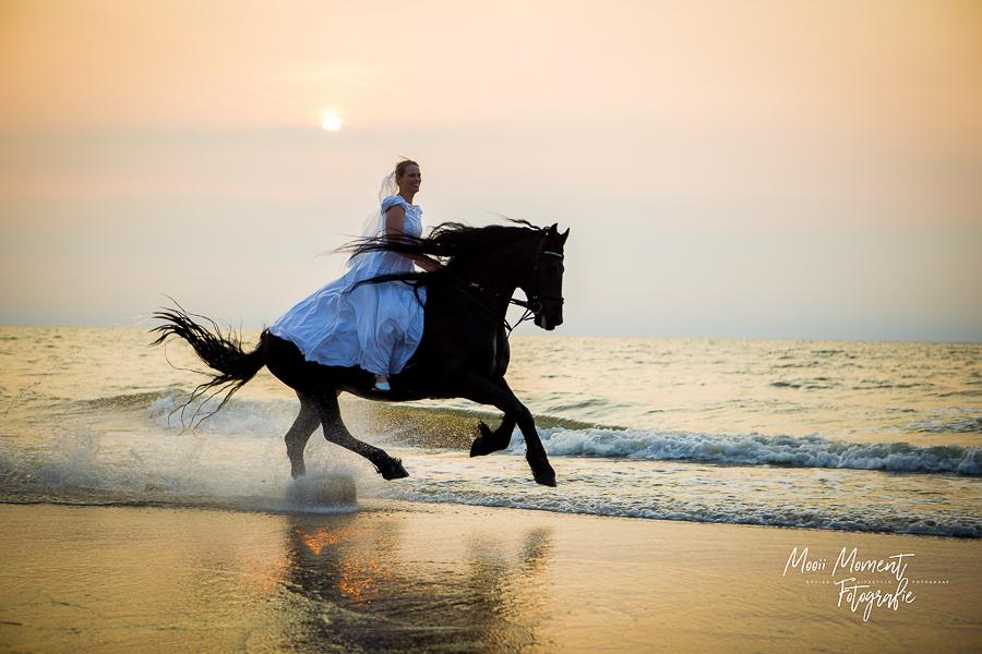Bruiden op het strand te paard Noordwijk aan zee